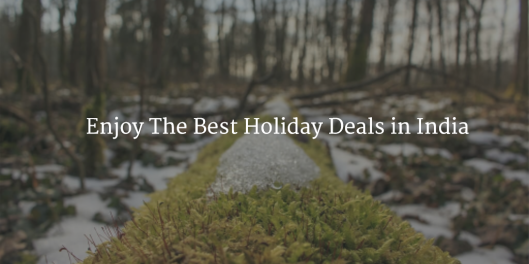 Best holiday deals from USA to India