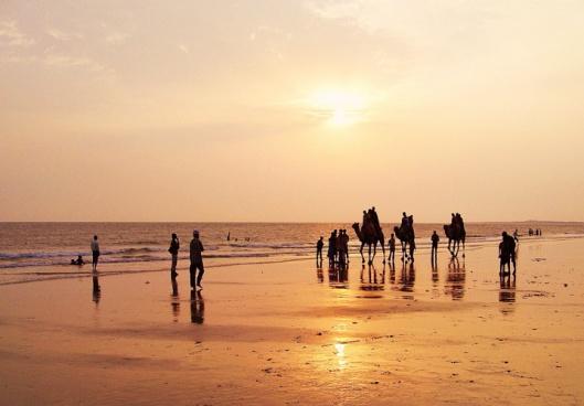 mandvi_beach_kutch_002